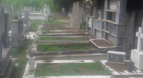 Εικόνες εγκατάλειψης πέριξ του Στρατιωτικού Νεκροταφείου στη Λάρισα – Απότιστα και τα δέντρα καταγγέλλει πολίτης