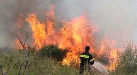 Σε εξέλιξη πυρκαγιά στο Ριόλο