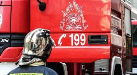 Φωτιά σε υπαίθριο χώρο κοντά στο Κατράκειο Θέατρο Νίκαιας