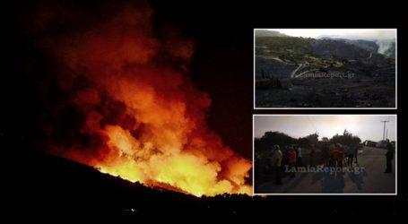 Εικόνες καταστροφής από τη φωτιά στην Εύβοια