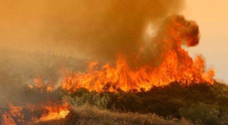 Σε εξέλιξη πυρκαγιά στη Νέα Ζωή Ασπροπύργου