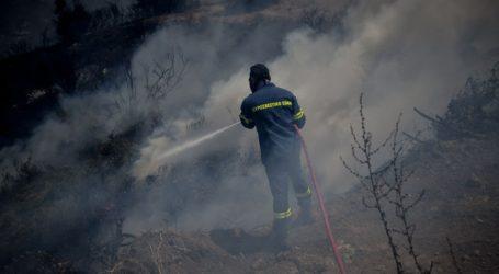 Χωρίς ενεργό μέτωπο η πυρκαγιά στην Εύβοια