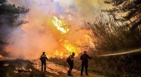 Σε κατάσταση Έκτακτης Ανάγκης οι πυρόπληκτες περιοχές