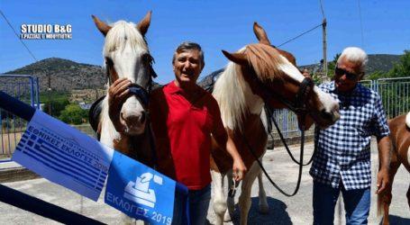 Με τα άλογα στην κάλπη