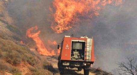 Πυρκαγιά σε αγροτοδασική έκταση στην Ανατολική Μάνη