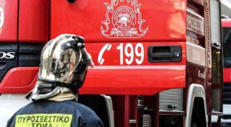 Ισχυρές πυροσβεστικές δυνάμεις επιχειρούν στην περιοχή του Αγίου Κυπριανού στην Ανατολική Μάνη