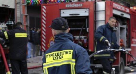 Υπό μερικό έλεγχο πυρκαγιά που εκδηλώθηκε σε πευκοδάσος στο Φυλακτό του Δήμου Σουφλίου