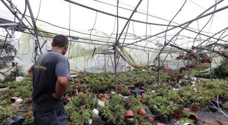 Εκτεταμένες καταστροφές σε καλλιέργειες από την κακοκαιρία στη Χαλκιδική