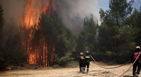 Υπό μερικό έλεγχο η πυρκαγιά στο Καλαμίτσι Λευκάδας