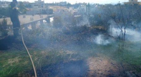 Σοβαρές υλικές ζημιές σε οχήματα προκάλεσε πυρκαγιά στην περιοχή Λενταριανά