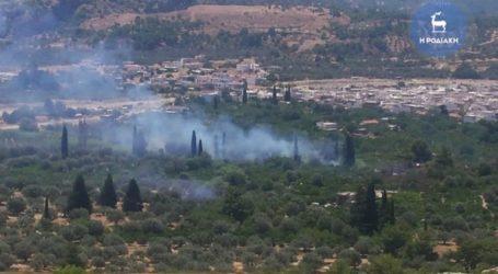 Τουλάχιστον 15 στρέμματα έκαψε η πυρκαγιά στη Ρόδο