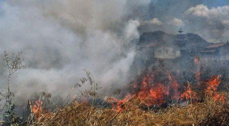 Πυρκαγιά σε δασική έκταση στην Ανατολική Μάνη