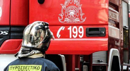 Υπό μερικό έλεγχο η πυρκαγιά σε δασική έκταση στον Ασπρόπυργο
