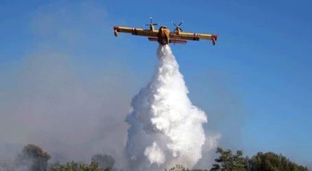 Πυρκαγιές στη Νότια Γαλλία – Απομακρύνθηκαν χιλιάδες κατασκηνωτές
