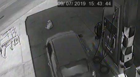 Αυτοκίνητο χτύπησε και σκότωσε σκύλο σε βενζινάδικο
