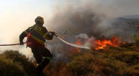 Σε εξέλιξη πυρκαγιά σε αγροτική έκταση στη Θάσο