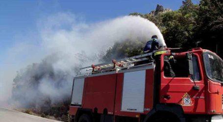 Φωτιά σε δασική έκταση στον Κιθαιρώνα