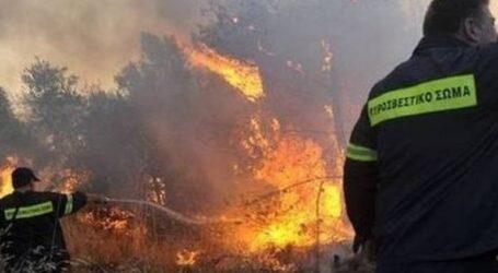Έσβησε η πυρκαγιά στη Σκάλα Πρίνου