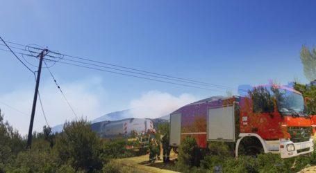 Συνεχίζει να μαίνεται η φωτιά στον Κιθαιρώνα
