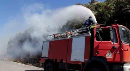 Σε εξέλιξη πυρκαγιά στα Γιάννενα