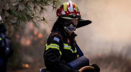 Φωτιά στην περιοχή Αγία Τριάδα στα Μέγαρα
