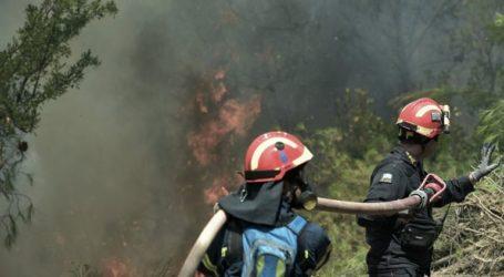 Σε εξέλιξη πυρκαγιά στο Μαρκόπουλο Αττικής