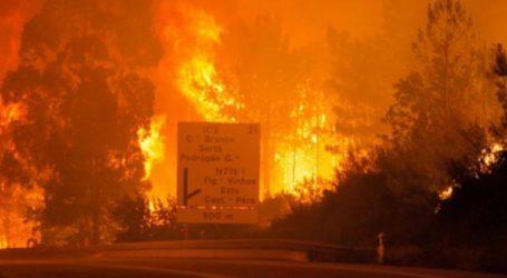 Είκοσι τραυματίες από τις μεγάλες πυρκαγιές στο κέντρο της χώρας