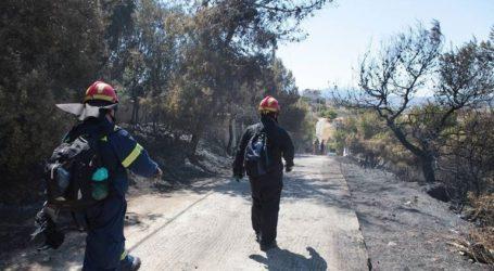Συνελήφθη 64χρονος για την πυρκαγιά στα Μέγαρα