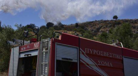 Υπό μερικό έλεγχο η πυρκαγιά στον Κιθαιρώνα