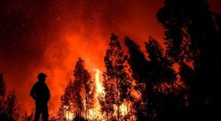 Οι πυροσβέστες ελπίζουν ότι θα κατασβέσουν τις πυρκαγιές σήμερα