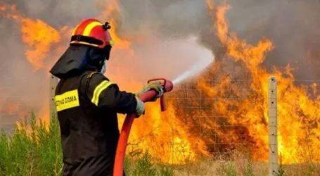 Σε εξέλιξη δύο φωτιές σε Ραφήνα και Βαρνάβα