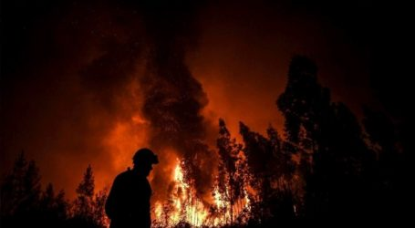 Υπό έλεγχο τέθηκε η μεγάλη πυρκαγιά στην Πορτογαλία