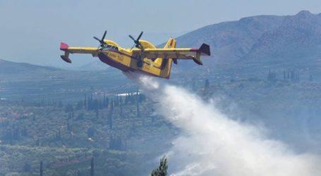 Πυρκαγιά σε δασική έκταση στην Κεφαλονιά