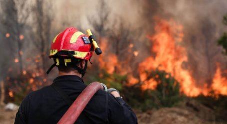 Υπό πλήρη έλεγχο η πυρκαγιά σε χορτολιβαδική έκταση στην Τύλισο