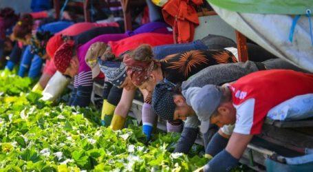 «Μεγάλη έξοδος» εργατικού δυναμικού από Ελλάδα, Ρουμανία, Βουλγαρία