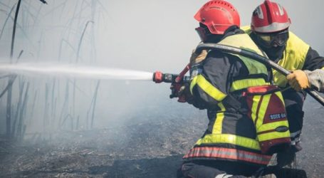 Χιλιάδες στρέμματα καλλιεργειών απανθρακώθηκαν από τις πυρκαγιές στη Γαλλία