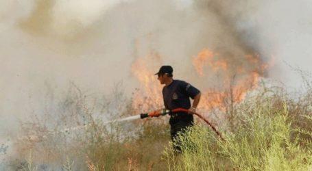 Υπό έλεγχο η φωτιά στο Καραβάδο