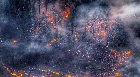 Σε κατάσταση εκτάκτου ανάγκης δύο περιοχές της Σιβηρίας λόγω πυρκαγιών