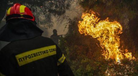 Υπό μερικό έλεγχο η πυρκαγιά στα Άνω Βούναια