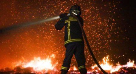 ΤΩΡΑ: Υπό έλεγχο η φωτιά στο Νεοχώρι Πηλίου