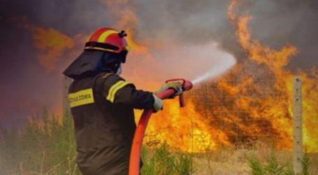 Φωτιά στη Νέα Αγχίαλο