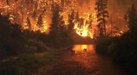 Τι σημαίνουν οι πυρκαγιές στην Αλάσκα για την κλιματική αλλαγή