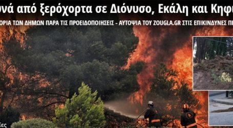 Συλλογική κρατική αμέλεια προκαλεί πυρκαγιές