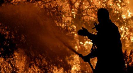 Σε εμπρησμό οφείλεται η πυρκαγιά στην Εύβοια