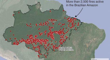 Βασική αιτία η παγκόσμια δίψα για το βοδινό κρέας και τη σόγια από τη Βραζιλία
