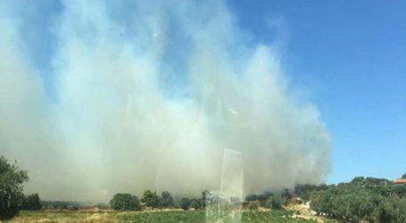 Φωτιά στην Αρτέμιδα – Κάηκε σπίτι