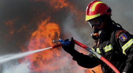 Δώδεκα δασικές πυρκαγιές εκδηλώθηκαν από το πρωί έως το βράδυ σε όλη την Ελλάδα