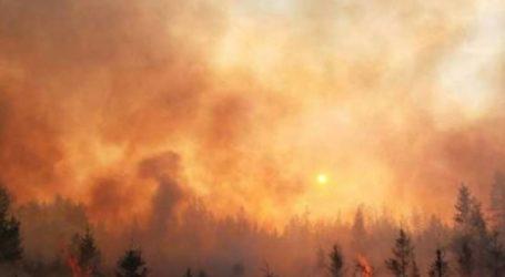 Συνεχίζονται οι προσπάθειες κατάσβεσης των δασικών πυρκαγιών στη ρωσική Άπω Ανατολή και στη Σιβηρία