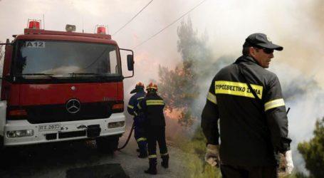 Υψηλός κίνδυνος πυρκαγιάς σε Αττική