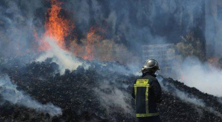 Στη Φθιώτιδα η Πυροσβεστική έσβησε όλες τις φωτιές